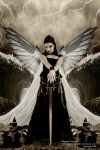 Avenging Angel by SuperiorGraphics
