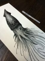 Squid by Moviemetal3