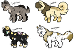 Warrior cats Adopt : Set price by ThePotato-Queen