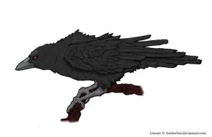 Itachi's crow by Nihilumsss