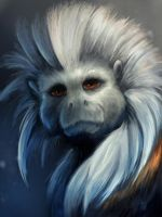 Cotton top tamarin painting by charfade