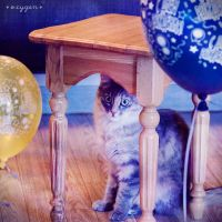cat with balloon by oxygen2608