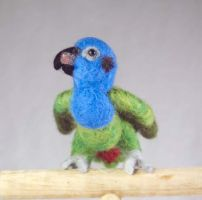 Felted blue headed pionus 2 by The-GoblinQueen
