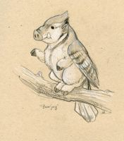 Boarjay by ursulav
