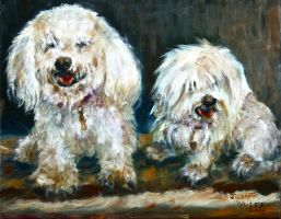 Dogs before Hair cut by Wulff-Arts