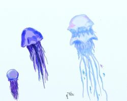 Jellyfish by ArtisOneofThem