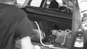 dead body in the trunk id by andborntolose