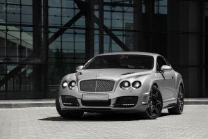 Bentley 8 by adisson-photography