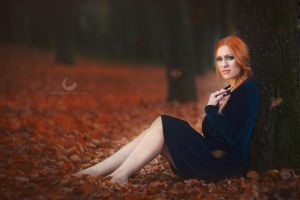 Red Leaves by Crims0nPhotography
