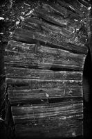 Wooden Pathways  (05) (Black and White) by SKiNBuS