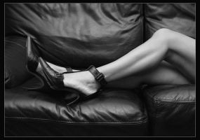 Skin and Leather by philcopain