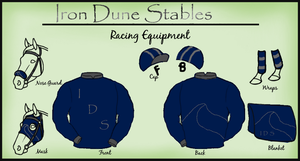 Racing Silks by patchesofheaven74