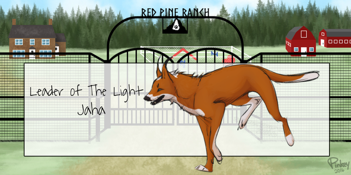 RPR's Leader of The Light by RedPineRanch
