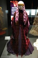 Amidala's Traveling Gown by DeRaKMiNe