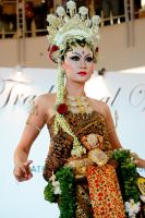 Javanese Traditional Bride Gown by blackguard-saracen