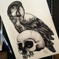 Parrot by Nellau666