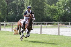 3DE Full Speed Galop by LuDa-Stock