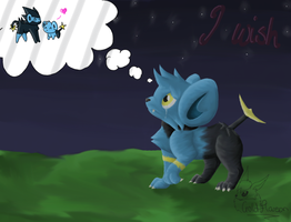 51. I Wish... by GoldFlareon
