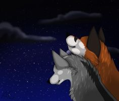 Just whatching the night-sky by Zaila-theCreator