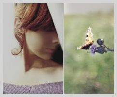 Butterflies inside. by Lentilcia