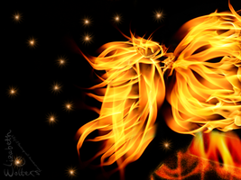 .:Flame:. by Sushibeth