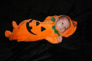 Baby - Pumpkin 5 by paradox11-stock