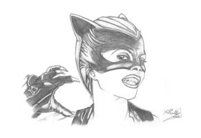 Halle Barry: Catwoman by shiprock