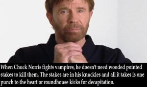 Chuck Norris Fact by SweetGems