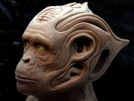 chimp wip by barbelith2000ad