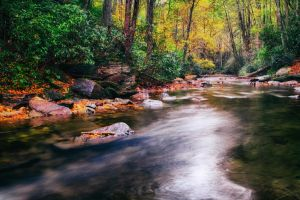 Looking Glass Creek - Pisgah National Forest by M-Lewis