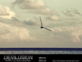 IMG_4197 by D3vilusion