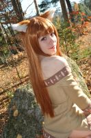 Autumn Day by cloudstrife597
