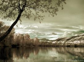 Infrared Lake by La-Vita-a-Bella
