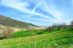 Spring landscape by marialivia16