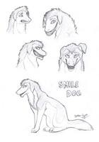 Smile Dog Sketches by Spectra-Sky