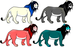 Lion adopts by lutara123