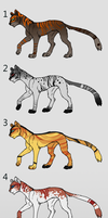 50pt Cheetah Adopts by Chaotic--Edge