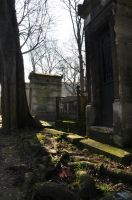 Pere Lachaise Cemetery by Aar-n113