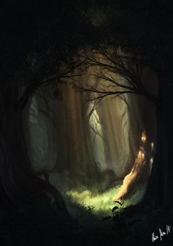 Mysterious Forest by LordDoomhammer