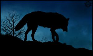 Wolf Silhouette by Dalkur