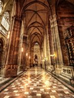 Prag - St. Veits Dom IV by pingallery