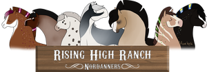 WELCOME by Rising-High-Ranch