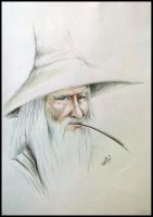 Gandalf O Branco by Giulianog