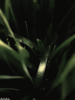 Water Droplets - Fade by OneofakindKnight