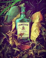 Home In Stone County (Jameson Whiskey Bottle) by ZahrahLeona