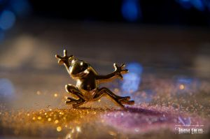 Disco frog by LuanaRPhotography
