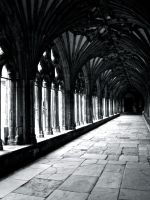Cathedral arches B+W by gee231205