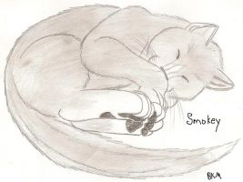 Sleeping Smokey by ShadowOrder7