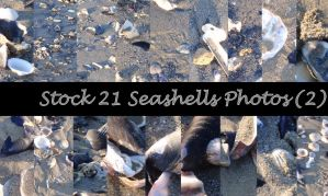 Stock 21 Seashells Pictures_Part2 by JEricaM