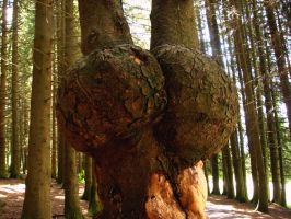 Tree Monster by lumizet